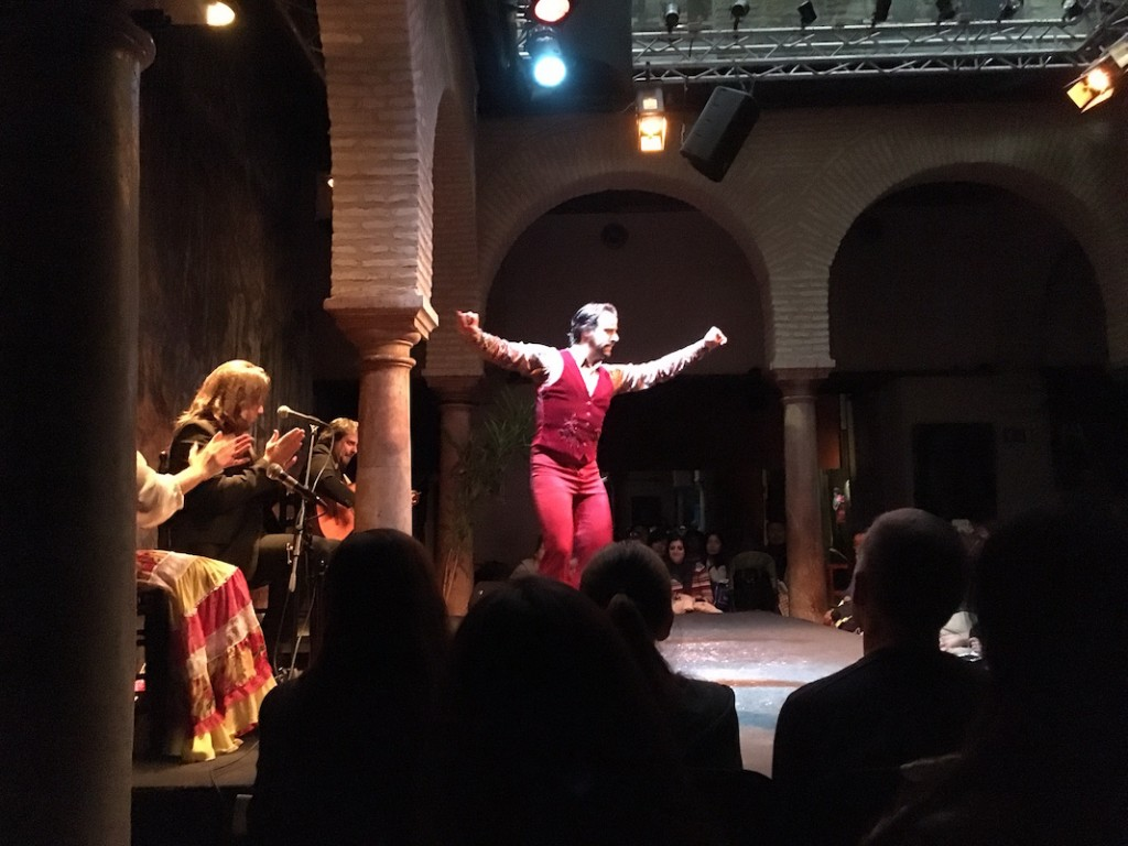 We went to a live Flamenco dancing show.